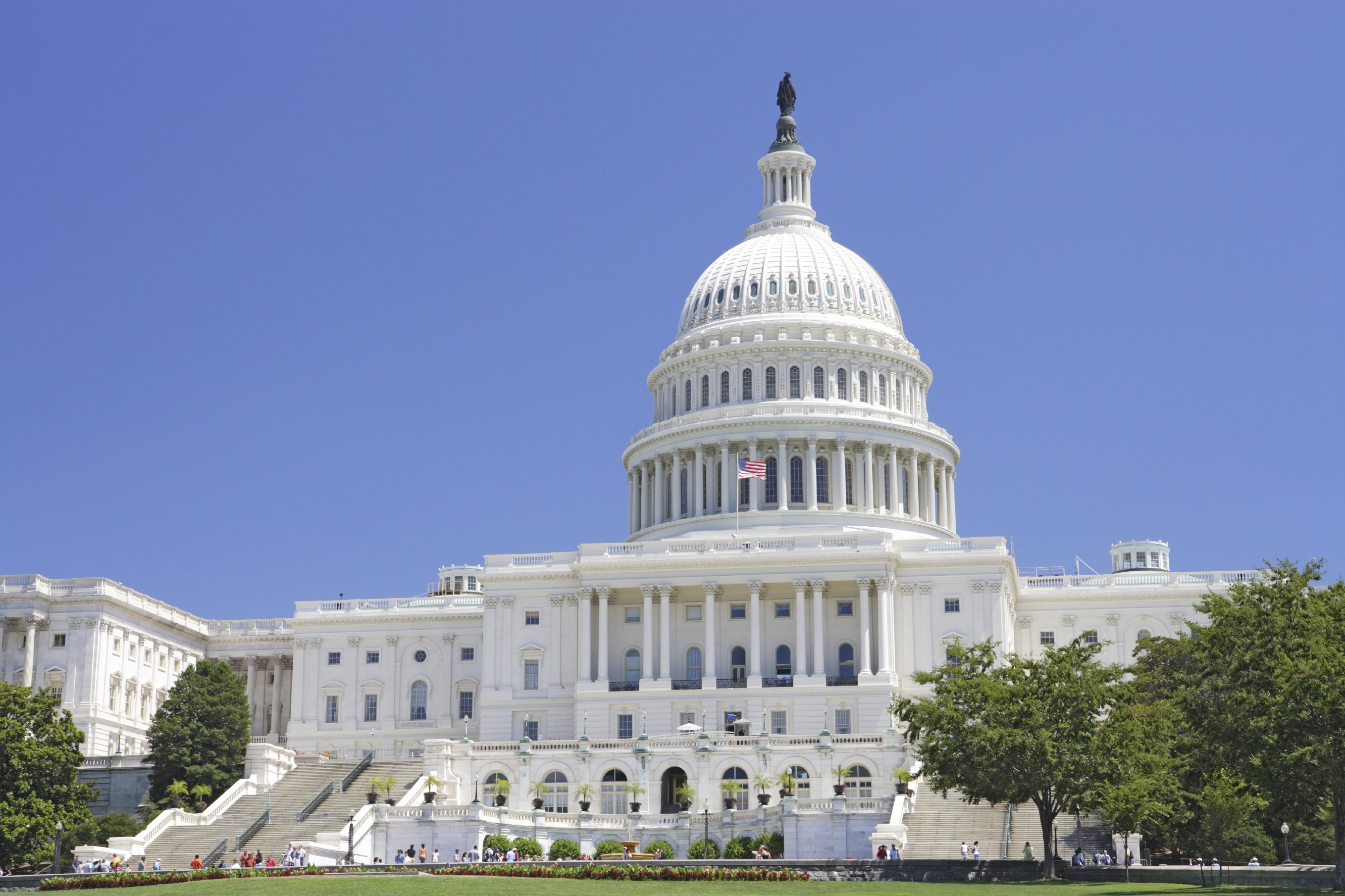 State And Federal Advocacy