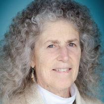 Louise Kaplan - State Representative